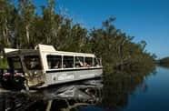 Enjoy a relaxing Noosa river cruise near Coolum on the Sunshine Coast