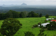 Visitors to the Sunshine Coast love hinterland day tours and charters