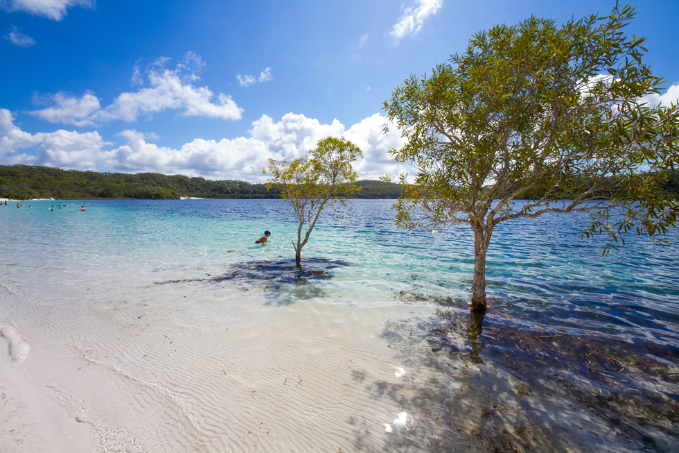 Fraser Island Tours Sunshine Coast